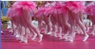 美丽的舞步